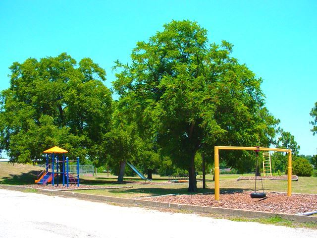 Wright Park image of swings and jungle gym